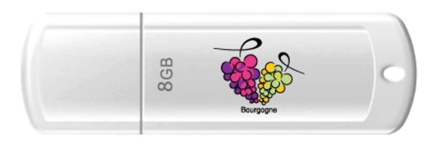 CLE USB 8 GO SERIE 370 BLANC GLOSSY USB 2.0 LOGO GRAPPE DE RAISIN BOURGOGNE 0