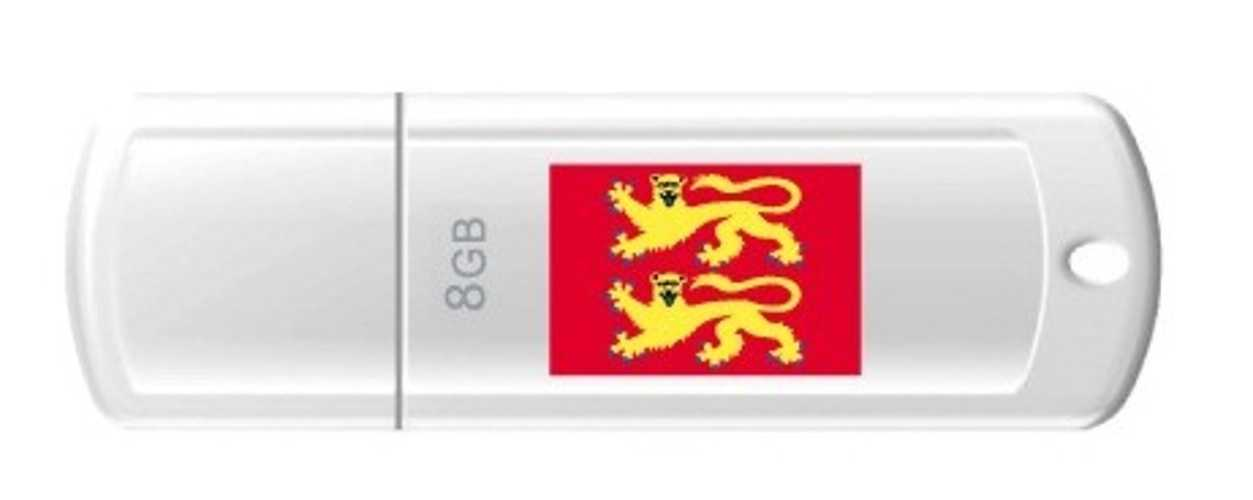 CLE USB 8 GO SERIE 370 BLANC USB 2.0 LOGO NORMANDIE 0