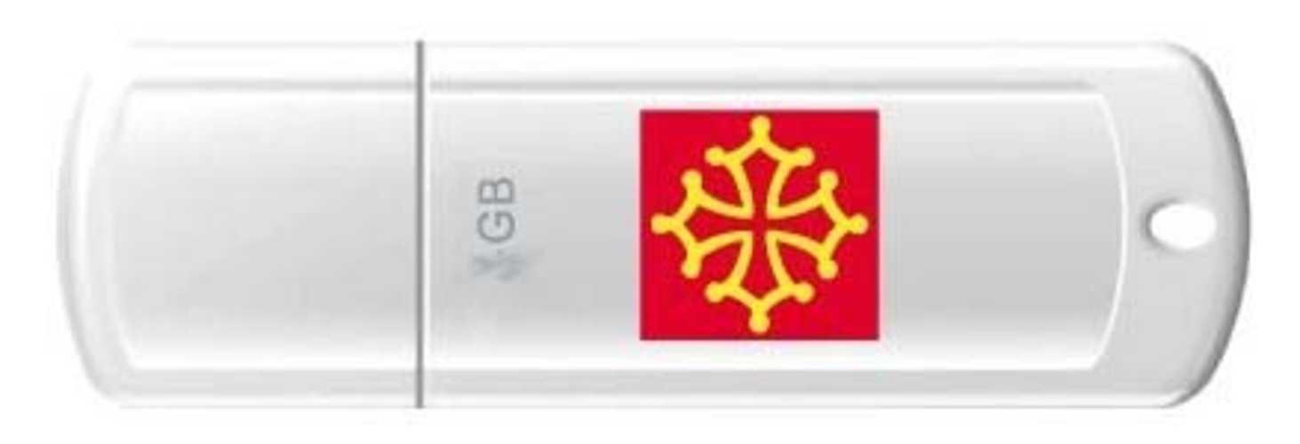 CLE USB 8 GO SERIE 370 BLANC USB 2.0 LOGO MIDI PYRENEES 0