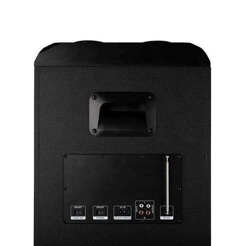 ENCEINTE WILDSKA2 USB/SD/FM/BT/AUX 800 WATTS ngswildska105