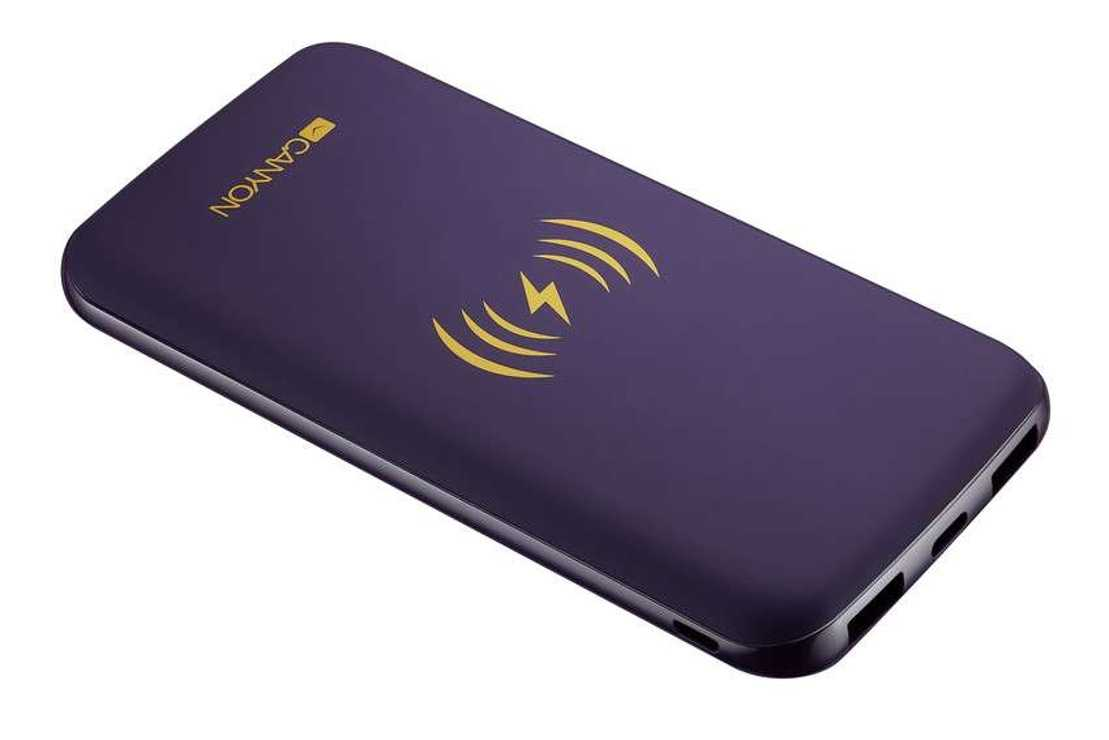 LOT DE 10 BATTERIES 8000MAH INDUCTION + MICRO USB /TYPE C VIOLET 11301scrc44dd36940eb2b4