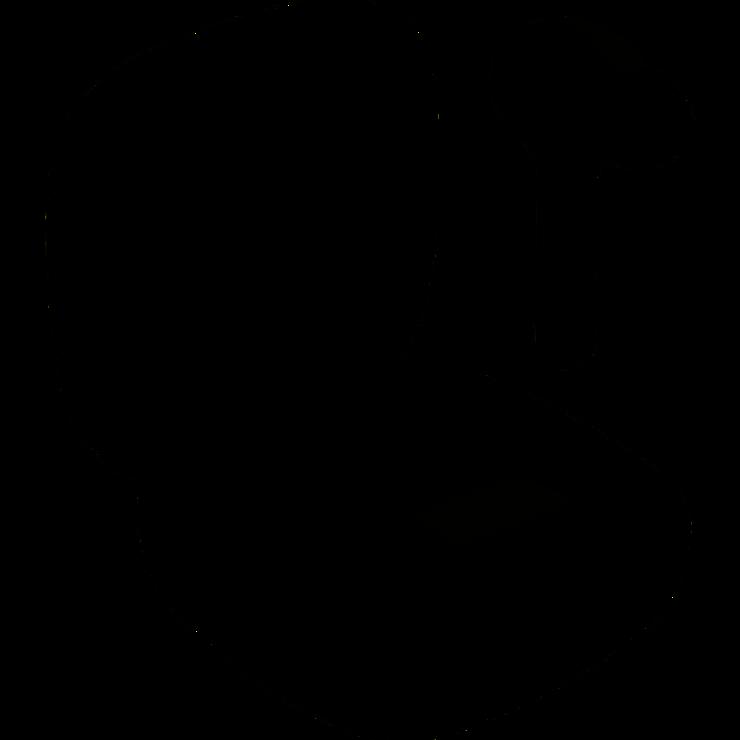 OREILLETTES AUDIO BH1001 BT 0